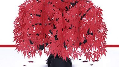 Photo of 3D Christmas Cards Pop Up Greeting Holiday Cards Gifts for Xmas/New Year/Birthday Card, Tree Card, Nature Card (Red Maple Leaf)