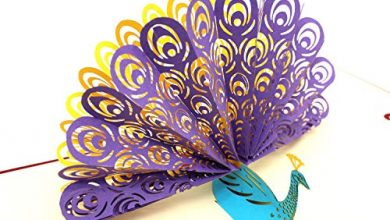 Photo of 2PCS Peacock Pop up Birthday Card for Wife Husband Kids Halloween Thanksgiving Card and Envelopes Handmade Laser Cut Anniversary Wedding Graduation Cards by ICEBLUEOR,Purple