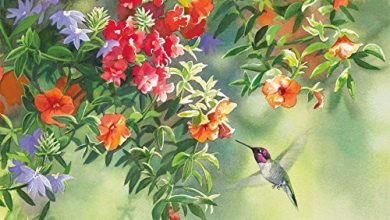 Photo of Lang Flavors of Summer Deluxe Note Card Set by Susan Bourdet, 5.25 x 4 Inches, 12 Cards and Envelopes (2080510)