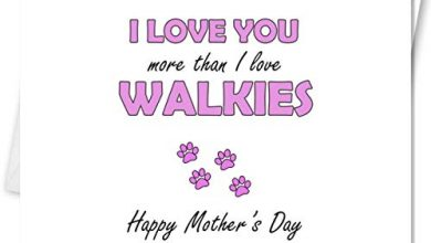 Photo of Funny sarcastic mother's day card- I love you more than I love walkies – from the dog