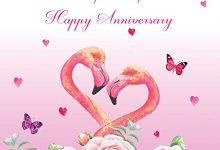 Photo of Anniversary Greeting Card – Happy Anniversary to an Special Couple – Flamingo with Beautiful Roses, Hearts and Butterflies – Blank Inside – Watercolour – Background (Pink)